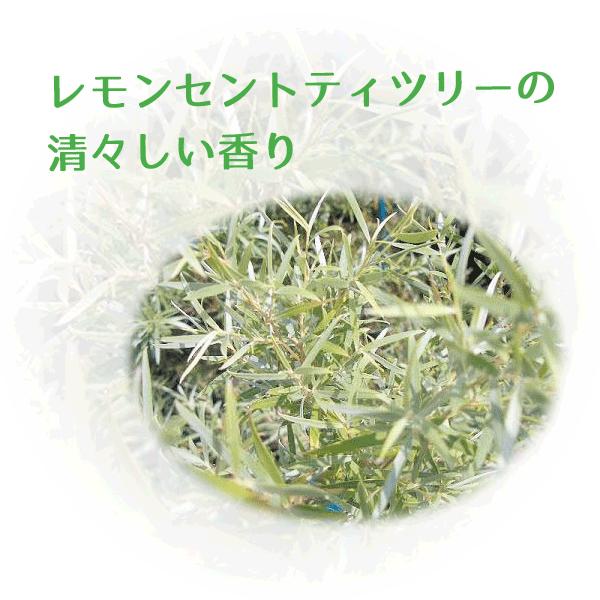 天然由来成分を主成分とした防虫剤