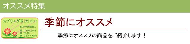 季節にオススメ|レメディコムセレクト
